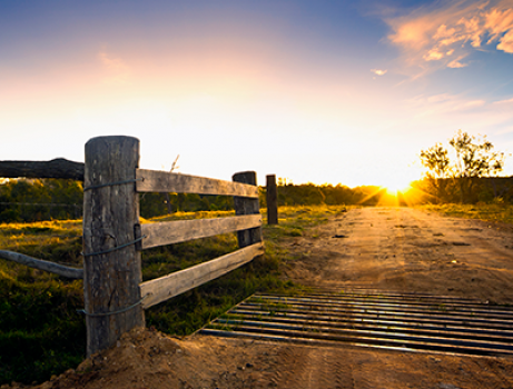 Cattle grid with dirt road leading into sunset