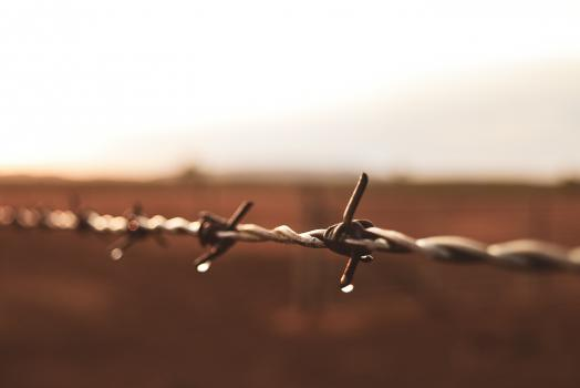 Barb wire fence with water droplet