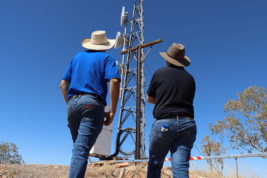 Image of two men looking at a telecommunications tower