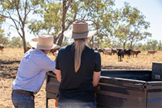 Two people talking over back of ute